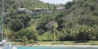 La faune des Caraïbes